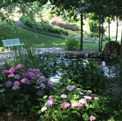 vrt Irene Polanec