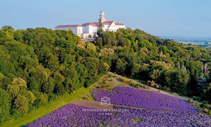 Sivkina polja opatije Pannonhalma na Madžarskem